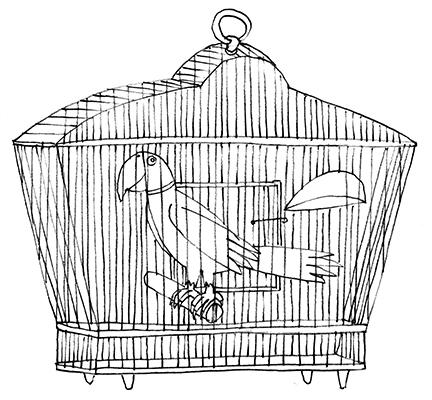 polly in the cage